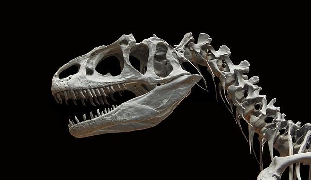 恐竜でかすぎワロタwww
